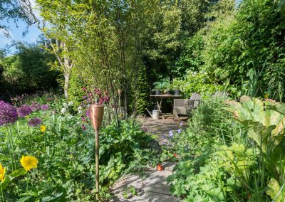 Cottage Wild Garden
