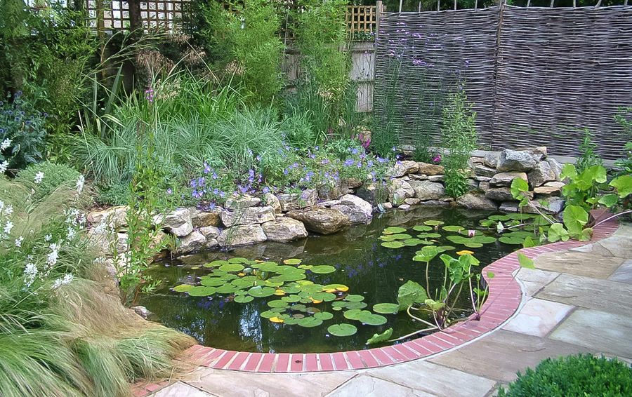 Ponds go wild landscapes for Garden ponds uk