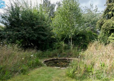 Naturalistic Wildlife Pond