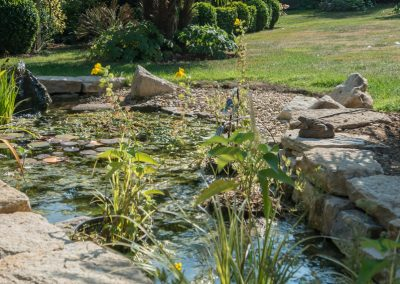 Pond with Natural Stone Edging