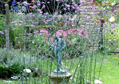 Formal Garden with Verbena and Cathedral Roses