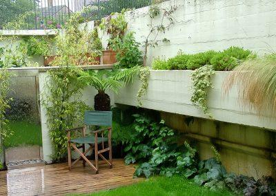 Contemprary Shade Garden