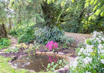 Wildlife Pond with Stepping Stones