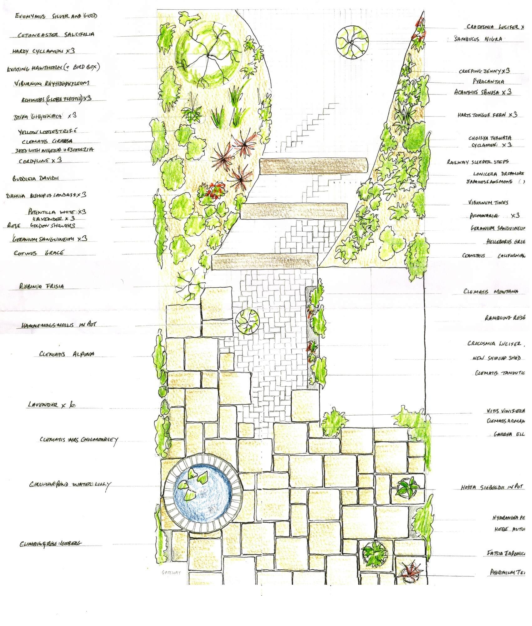 Garden Design - Go Wild Landscapes