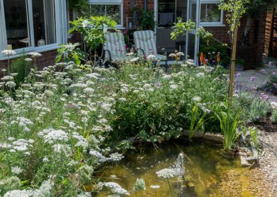 Pond-with-wildflowers